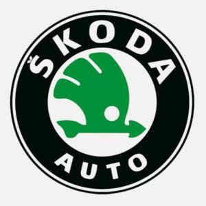 Фаркопы Skoda